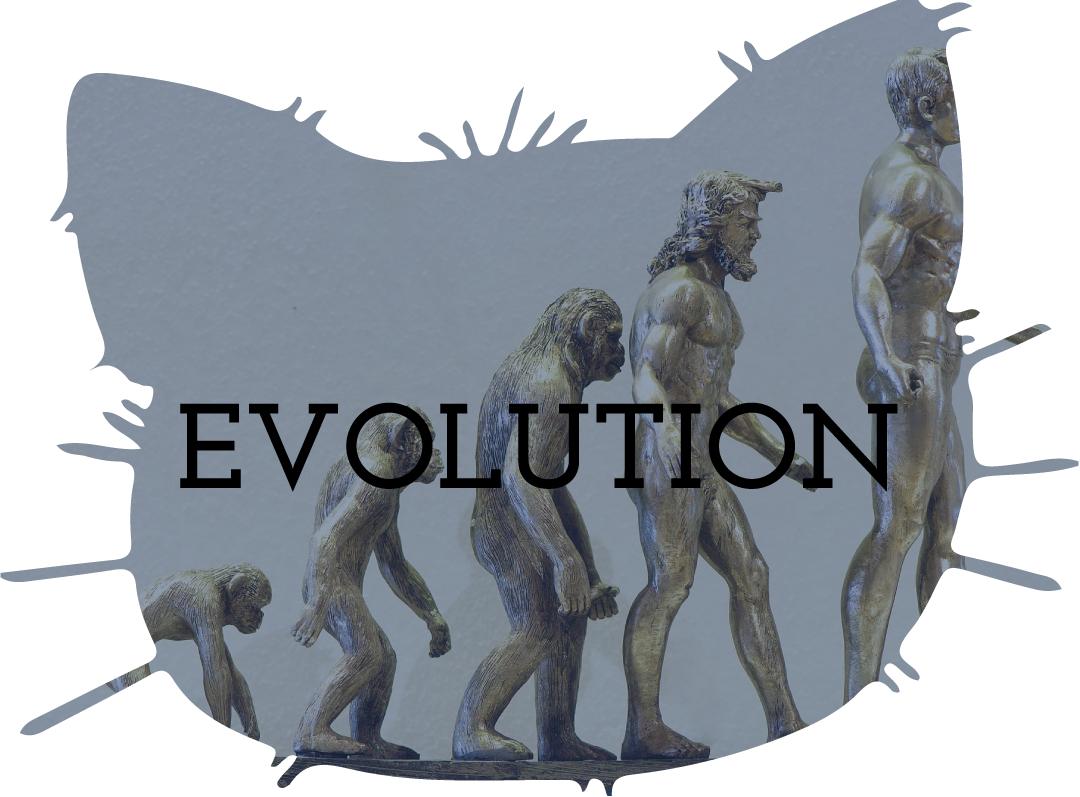 Evolution Teaching Resources