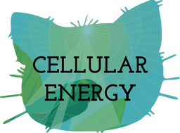 Cellular Energy Teaching Resources