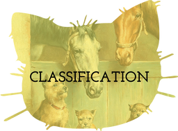 Classification Teaching Resources