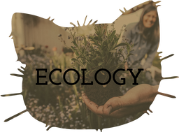 Ecology Teaching Resources