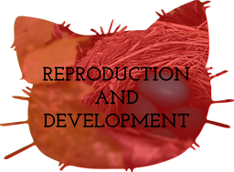 Reproduction and Development Teaching Resources