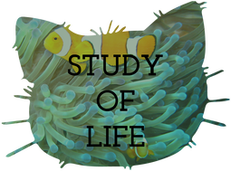 Study of Life Teaching Resources